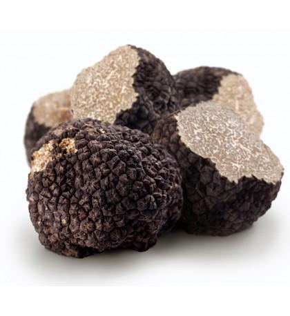 Hiver frais truffe noire